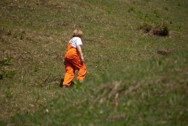 Vaja reševalnih psov Storžič 23.4.2011 - foto