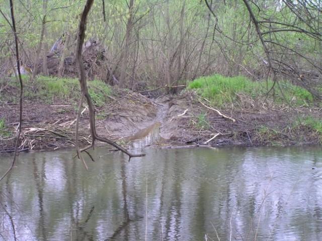 Obvodni glodalci - foto