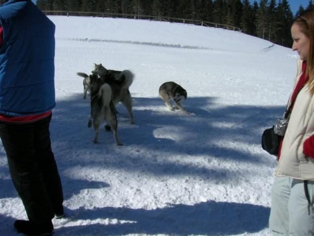 Marec 2006 - Areh - Aska, Mal, Snežka, Delta, - foto