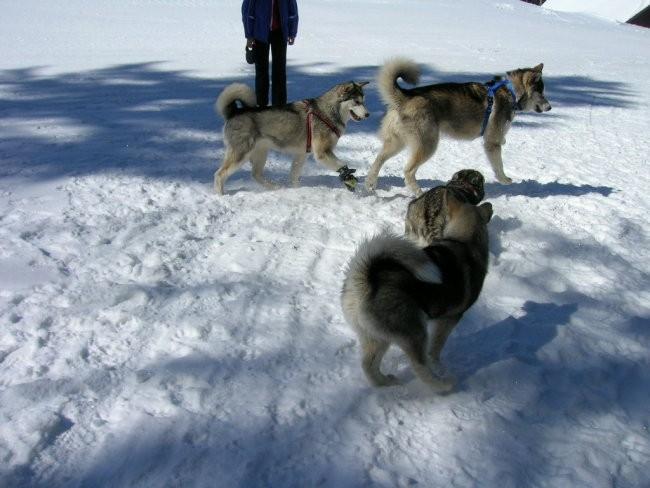 Marec 2006 - Areh - Aska, Mal, Snežka, Delta, - foto povečava
