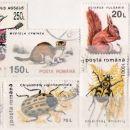Živali-Romunija