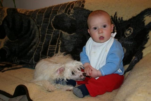 Bailey in Nik - foto