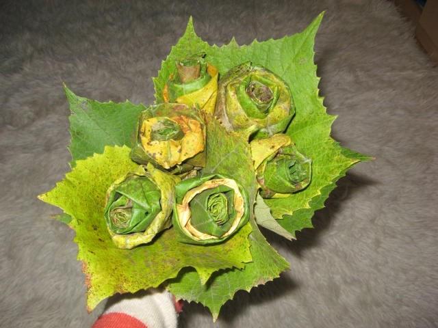 šopka iz trtnih listov