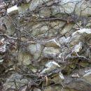 združeno kamenje in korenine...v slogi je moč :)