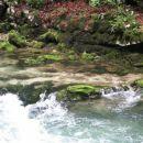 Vintgar...kristalno čista voda
