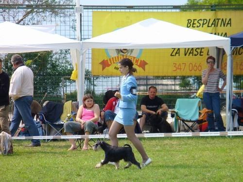 CAC Split 2006. - foto