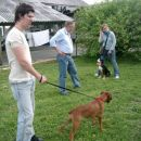 Pasje igralne urice