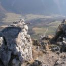 vrh Kopitnika