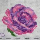 rožica  - krožni swap št. 3