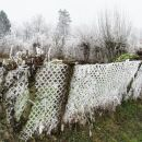 Mura 60