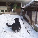 16.12.2007 dirkanje po snegu