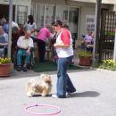 05.07.2007 shitzu Pan