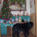 25.12.2007 božični večer