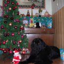 25.12.2007
