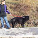 09.02.2008 Europark Zagorje - Sona in Sabina
