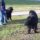 09.02.2008 Sona in Bruno
