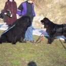 09.02.2008 Bruno in Sona pozdrav v slovo