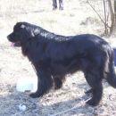 16.02.2008 Retje Sona