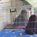 02.05.2008 sva kazensko zaprta