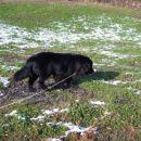 27.01.2007 Euro park Zagorje
