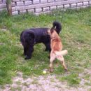 20.04.2007 Sona in Klim