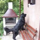 27.06.2007 Sona in Tara