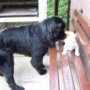 27. 06.2007  Sona in Lumpi