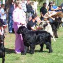 09.09.2007 CACIB UMAG razred mladih