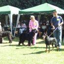09.09.2007 CACIB UMAG še enkrat postavitev vseh 9 psov