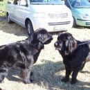 14.10.2007 sestrici Sona in Semi