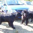 14.10.2007 Sona in Semi