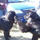 14.10.2007 Sona in Semi en lep pozdrav