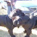 14.10.2007 Sona in Semi joj kako se imava radi