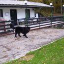 25.10.2007 KD Trbovlje