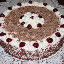 Višnjeva torta Črni gozdiček, jan. 2005