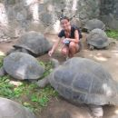 Hranjenje želvic oz.želv