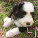 Flo <3