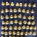 na koncu posprejani z obilico zlatega spreja (das masa rada vpija barvo)