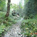 Pot proti pl. Laz
