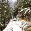 po snegu proti Klemenči jami