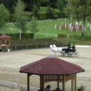 Piber 2007