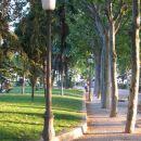 Parkov in zelenja je je ogromno.