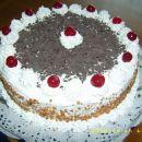 Sadno skutna torta z višnjami-Renata69