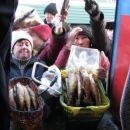 Ponudba rib je vecja od povprasevanja.
