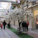 Trgovci obljubljajo pomlad ...