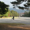 Kyoto imperial park.