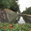 Nazaj v Kyotu - obzidje gradu Nijo.