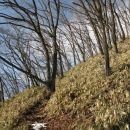 Tudi tu sasa grass, pobocje pa povsod enako strmo. Zanimivo.